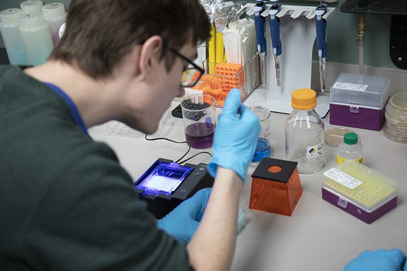 New Cell Culture Room and Updated Undergraduate Research Laboratory